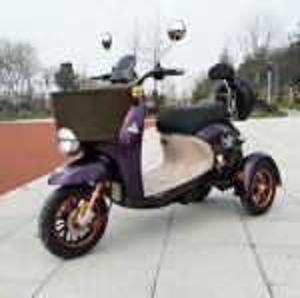 Elektrické koloběžky, elektrické tříkolky Elektrický skútr tříkolka 1000 W 20 Ah luxusní design dojezd 60 km Elektrické koloběžky, elektrické tříkolky